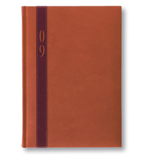 Customised Castelli Diaries