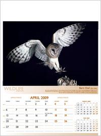 Moments Calendars 2019
