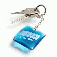 Aqua keyrings with logo
