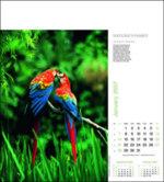 Corporate Calendars 2022