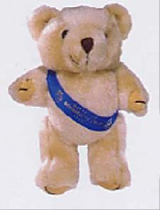Promotional Bear with Advertising Sash