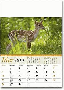 Business Calendars 2022
